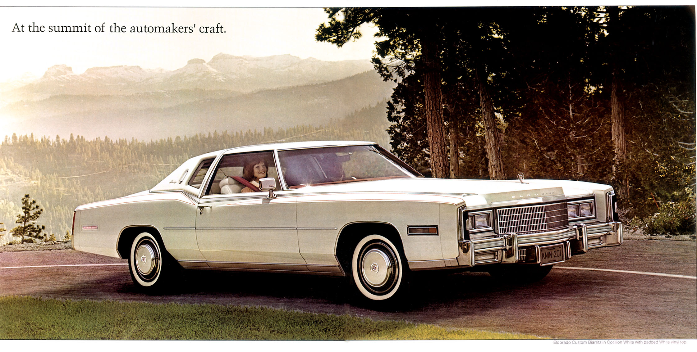 Wiring Diagram Moreover 1976 Cadillac Eldorado Engine Vacuum Diagram
